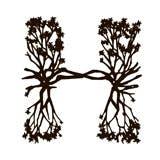 Hyde Sunset logo