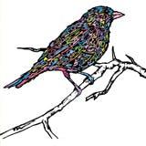 Songbird Cafe logo