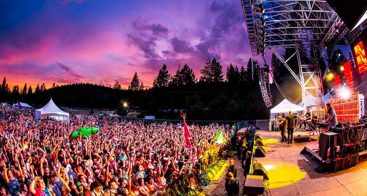 Bass Camp Festival