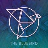 The BlueBird logo